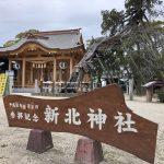 新北神社と御神木「飛竜木」