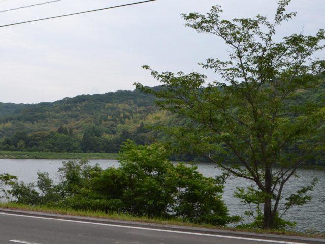 緑に囲まれた小さな湖
